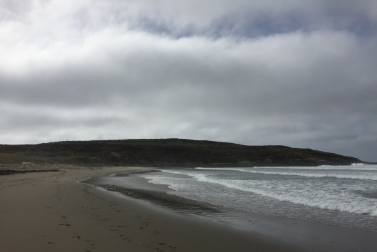 Salmon Creek Beach